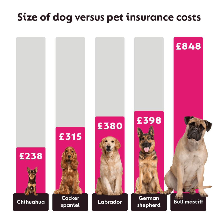Annual cost of insurance for different sized dogs